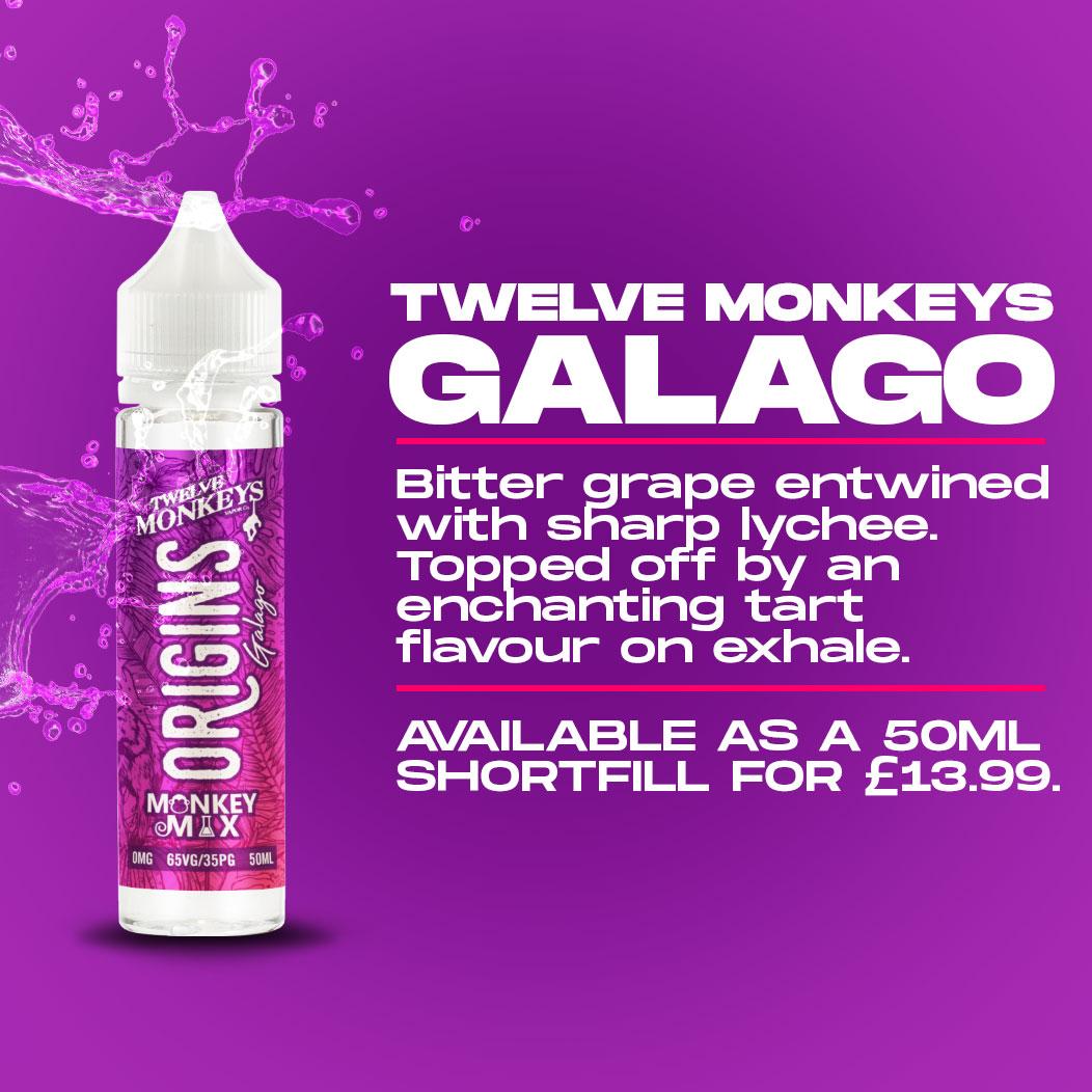 Twelve Monkeys - Galago Review